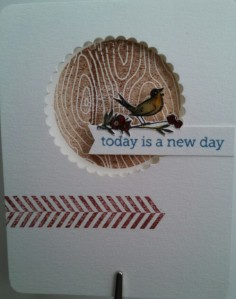 window bird card
